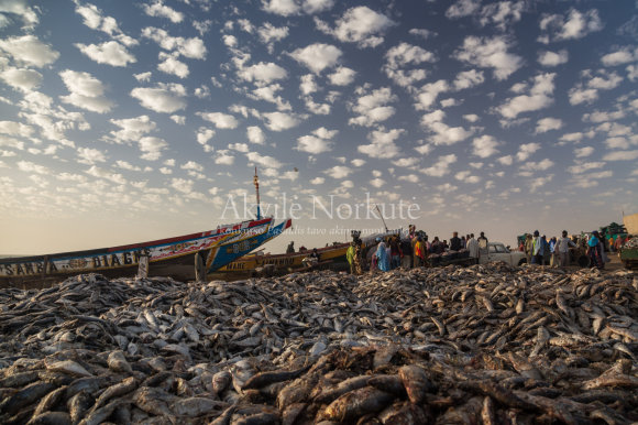 akvile_norkute_2015_mauritanija-copy-2-5620ae2862cc3