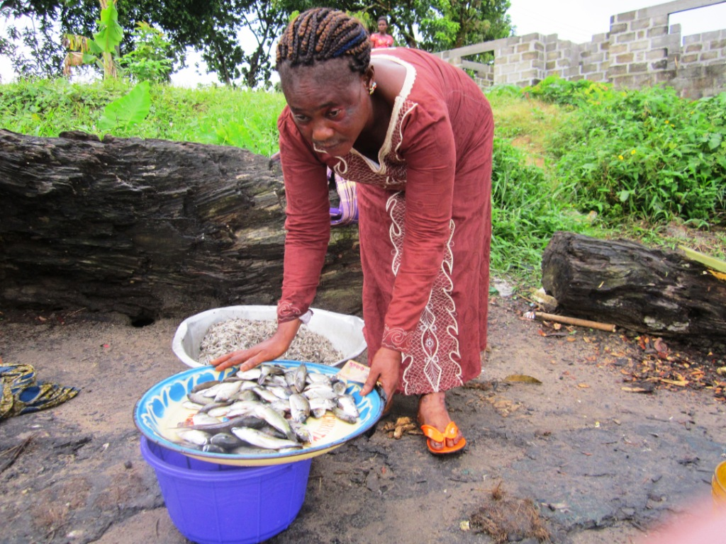 Fish for sale at the severely polluted Bodo creek - packed